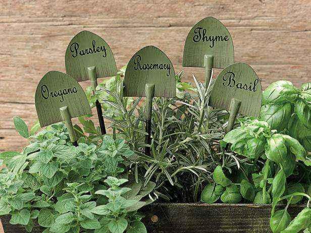 1452846134510 | Как все лето выращивать сочную зелень к столу
