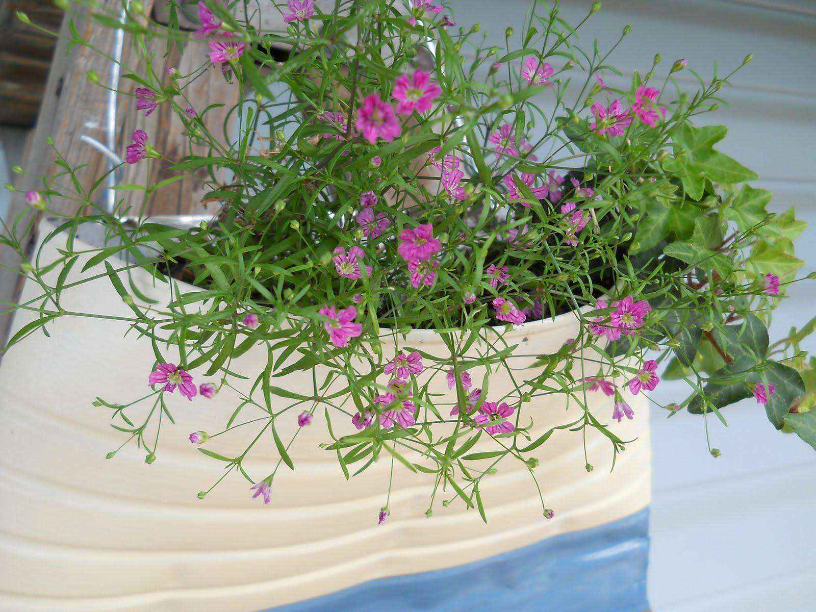 image16-4   Как сделать уютный сад в ограниченном пространстве и при ограниченном бюджете