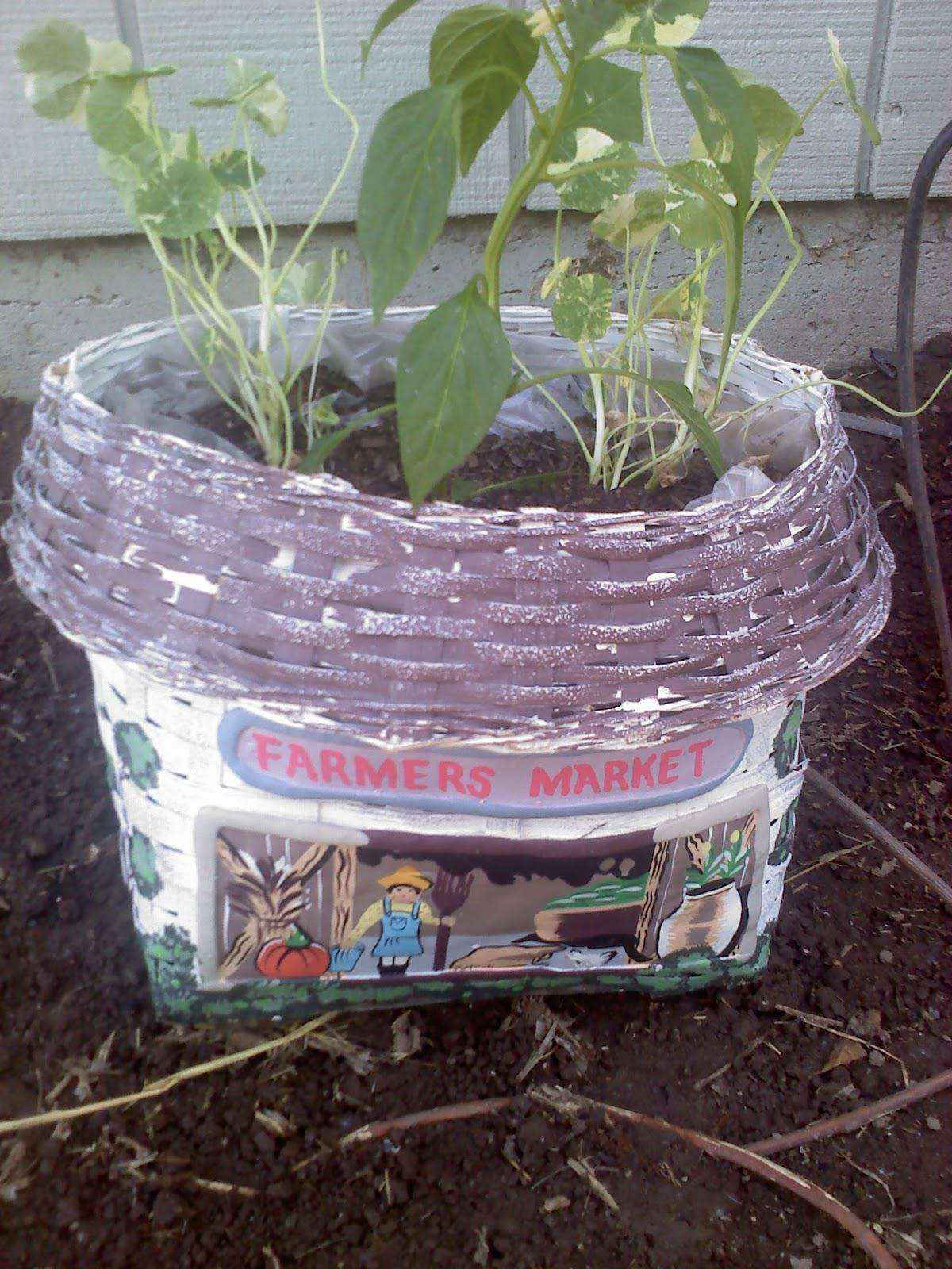 image17-4   Как сделать уютный сад в ограниченном пространстве и при ограниченном бюджете