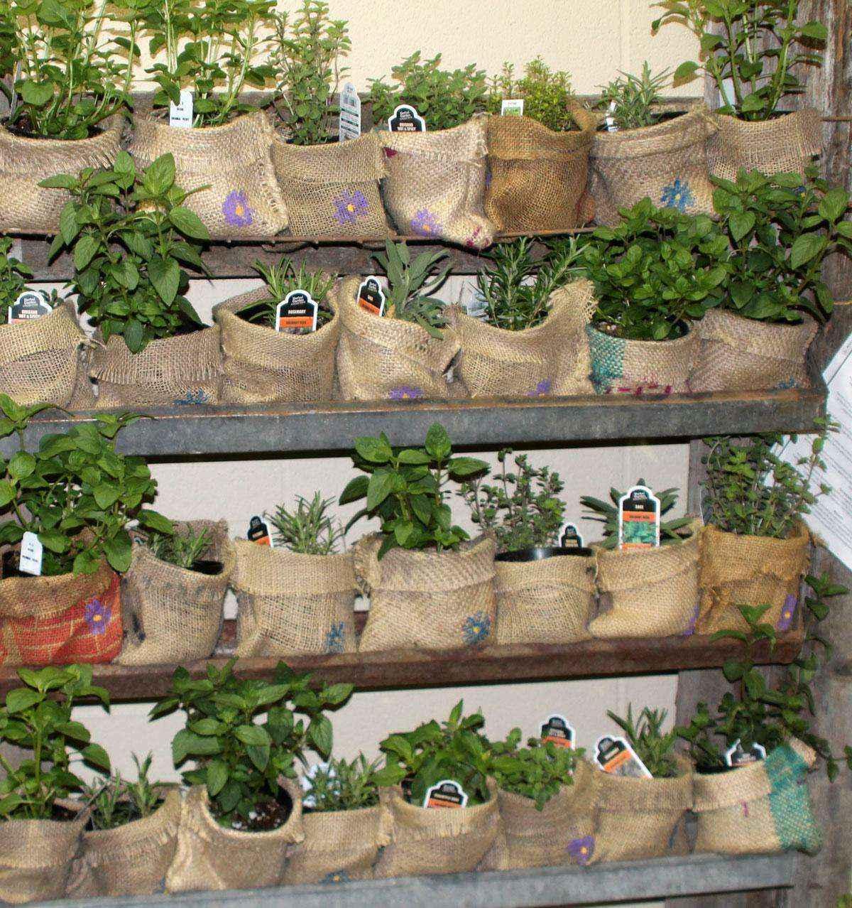 image19-4   Как сделать уютный сад в ограниченном пространстве и при ограниченном бюджете