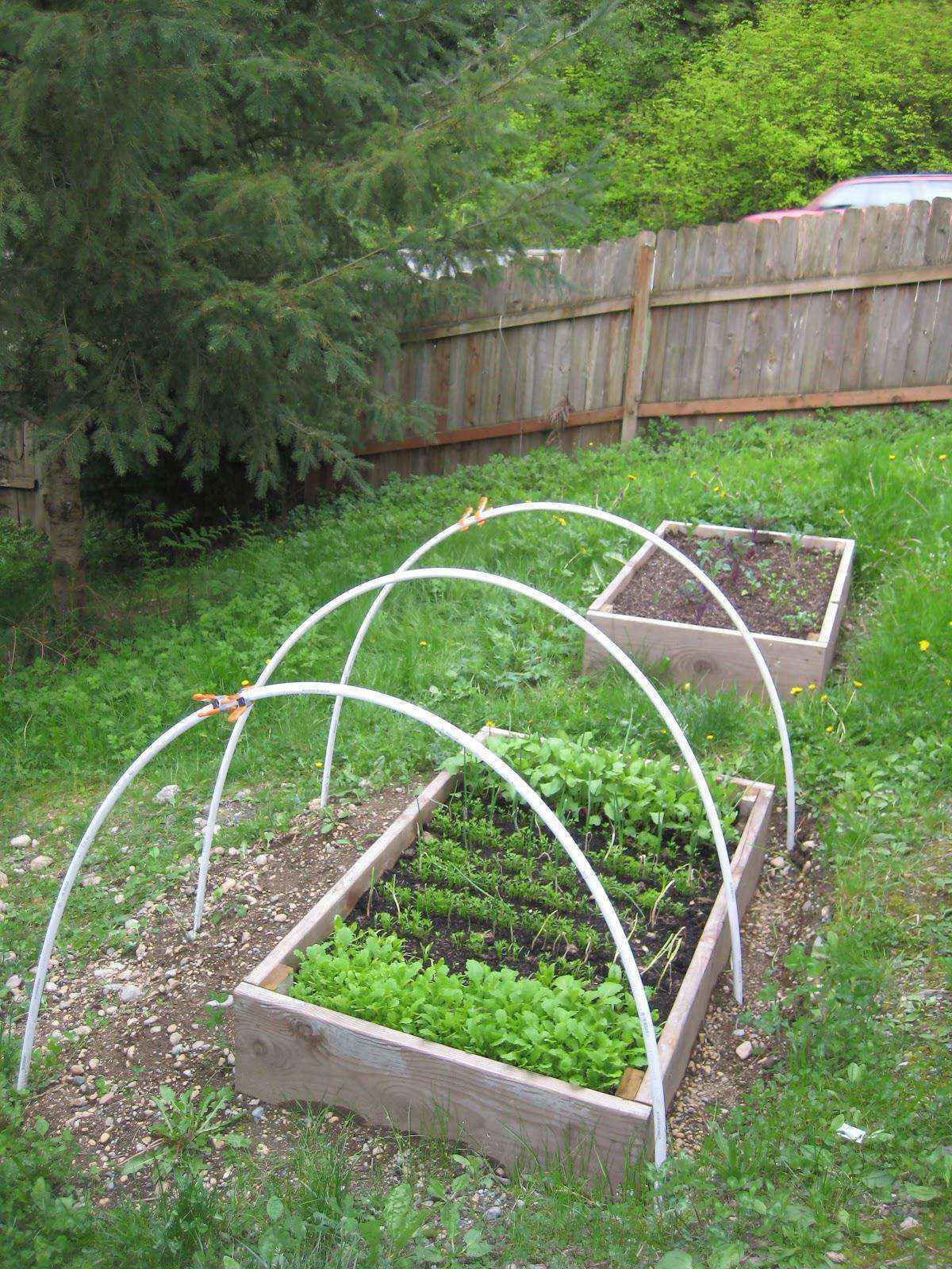 image23-2   Как сделать уютный сад в ограниченном пространстве и при ограниченном бюджете