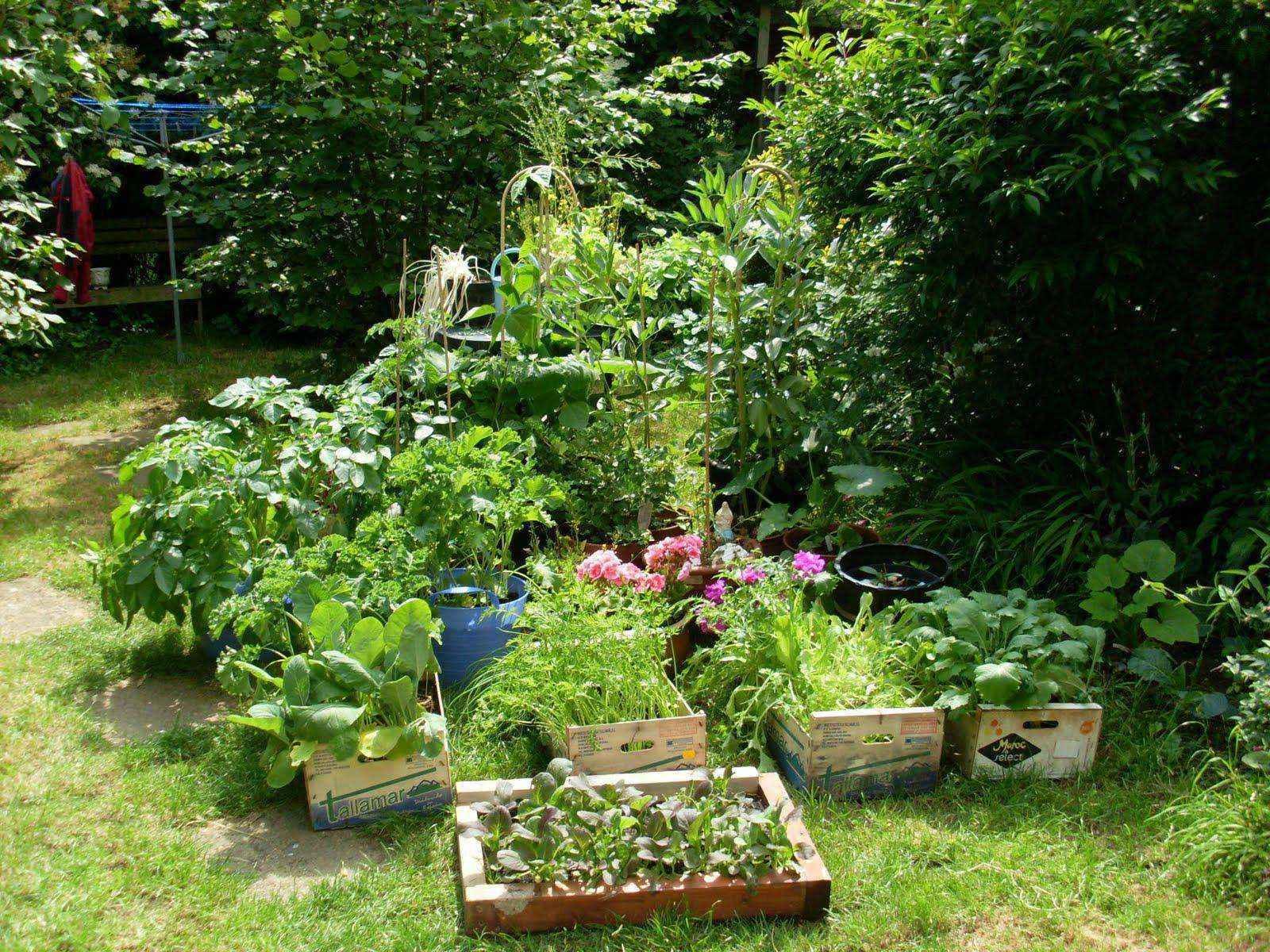 image25-1   Как сделать уютный сад в ограниченном пространстве и при ограниченном бюджете