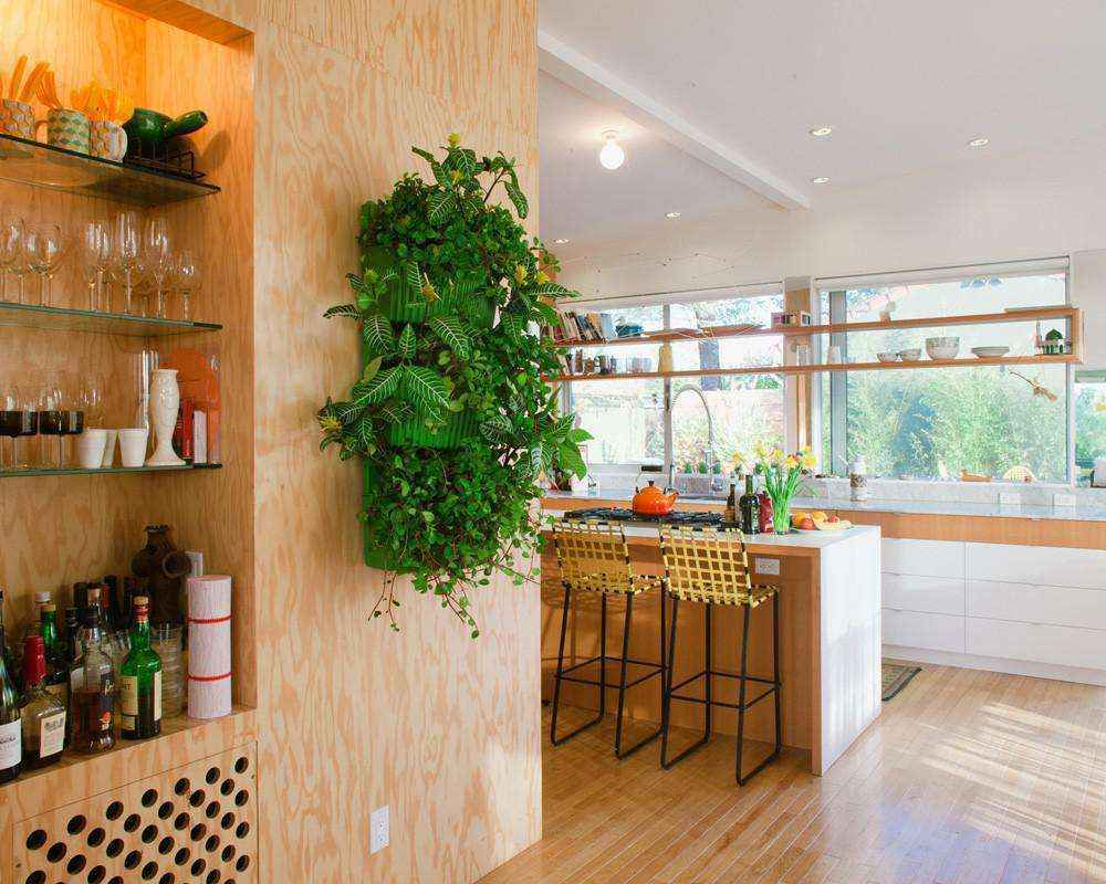 image32   Как сделать уютный сад в ограниченном пространстве и при ограниченном бюджете