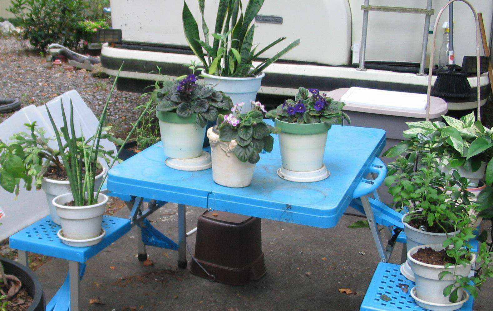 image4-31   Как сделать уютный сад в ограниченном пространстве и при ограниченном бюджете