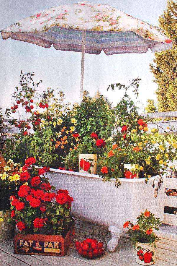 image49   Как сделать уютный сад в ограниченном пространстве и при ограниченном бюджете