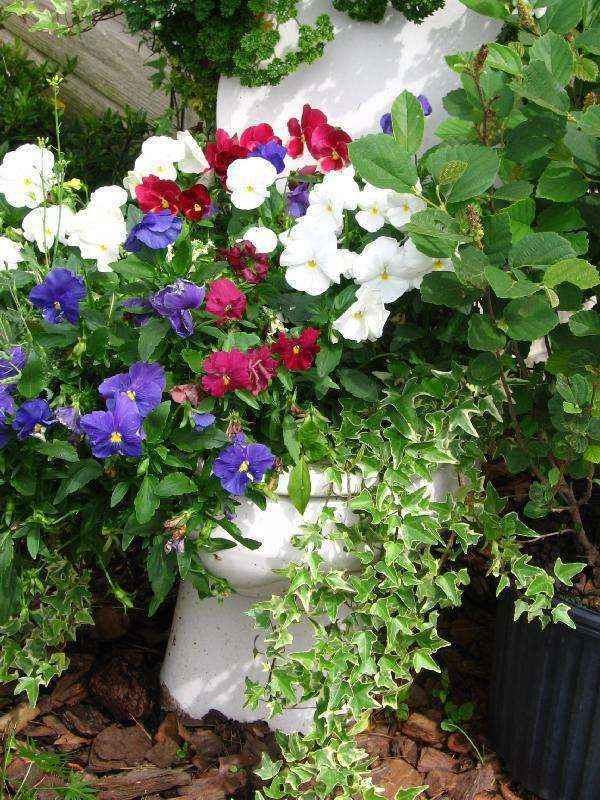 image56   Как сделать уютный сад в ограниченном пространстве и при ограниченном бюджете