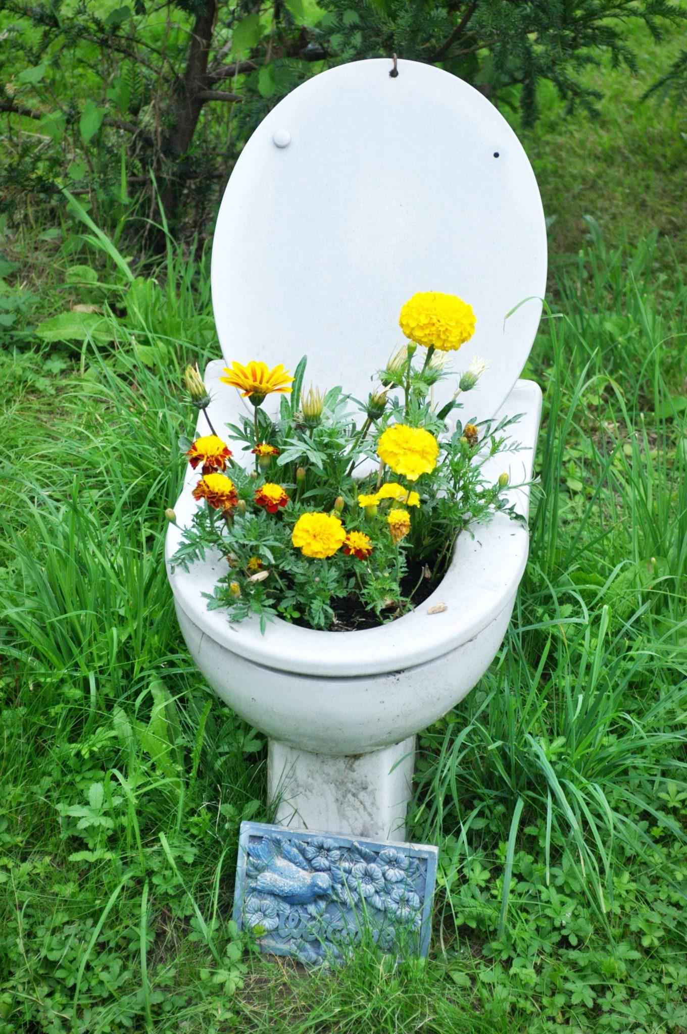 image58   Как сделать уютный сад в ограниченном пространстве и при ограниченном бюджете