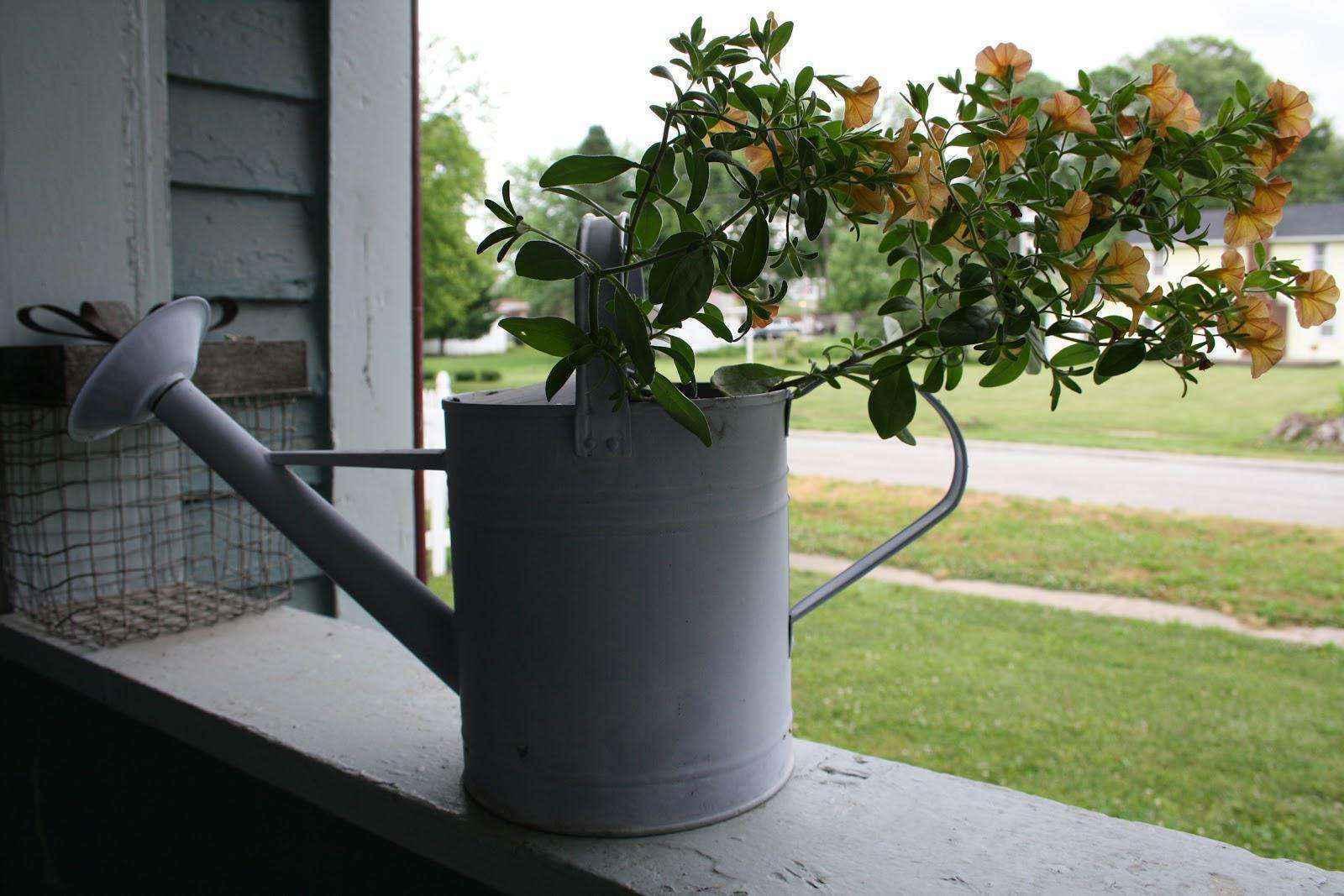 image62   Как сделать уютный сад в ограниченном пространстве и при ограниченном бюджете
