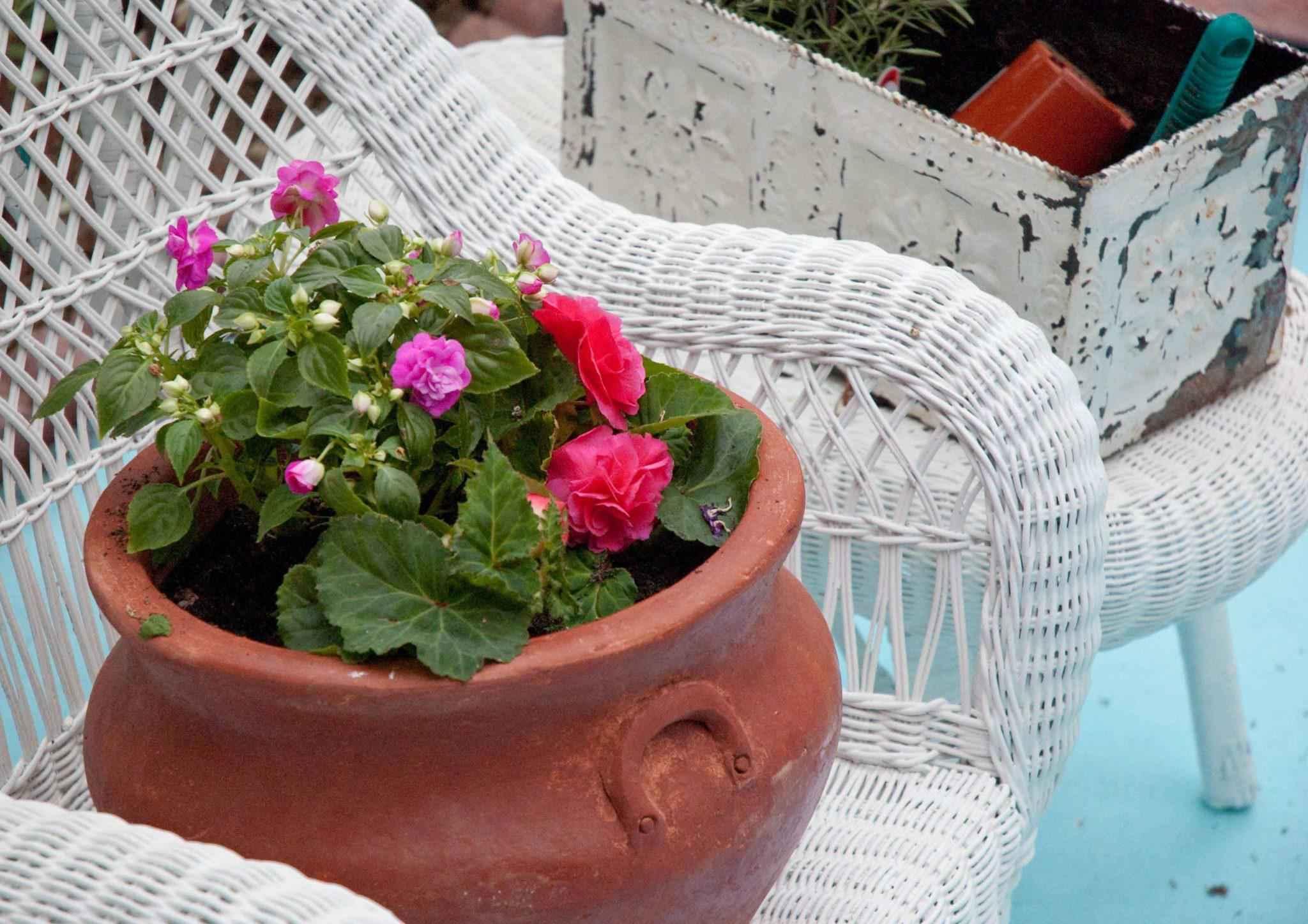 image8-14   Как сделать уютный сад в ограниченном пространстве и при ограниченном бюджете