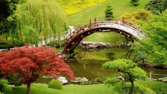 Золотые правила организации японского сада 1   Дока-Мастер