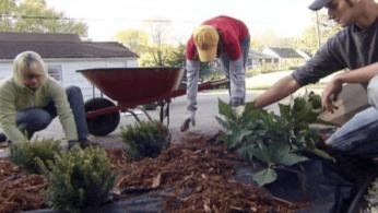 Как предотвратить появление сорняков при помощи ландшафтной ткани 1 | Дока-Мастер
