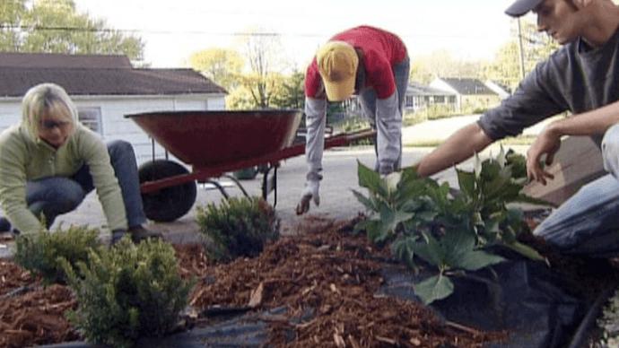 Как предотвратить появление сорняков при помощи ландшафтной ткани