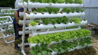 Как сделать вертикальный сад из ПВХ-труб 2 | Дока-Мастер