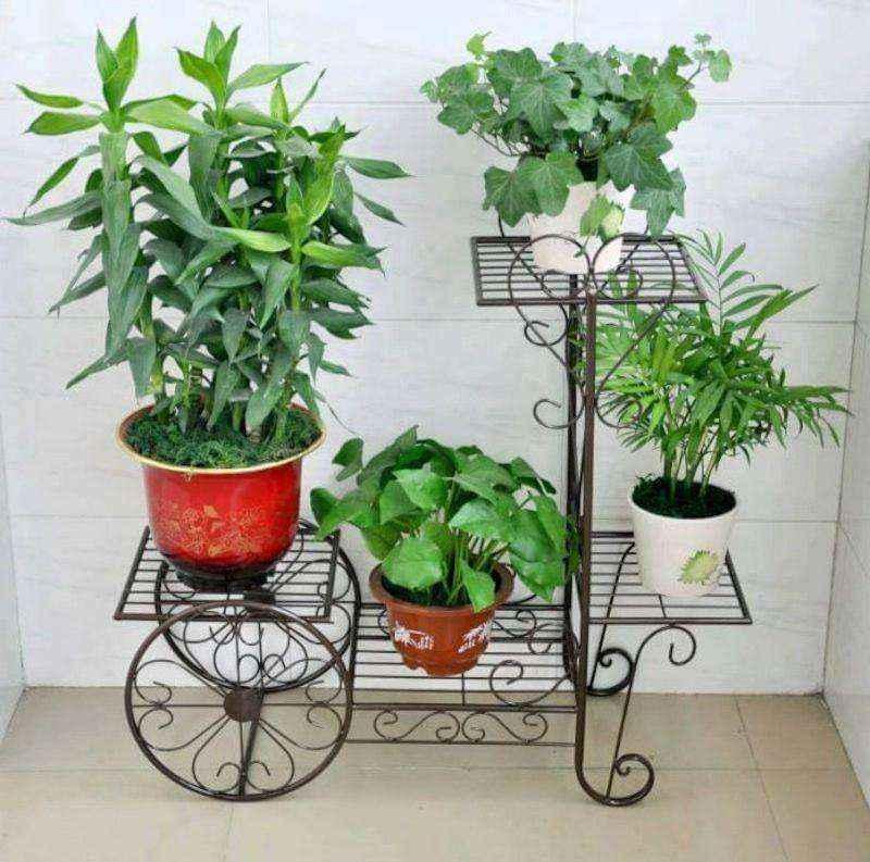 plantas-1 | 10 великолепных идей для украшения вашего дома растениями которые вам понравятся