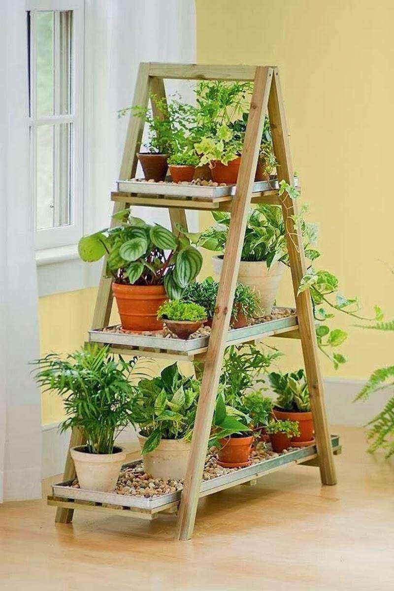 plantas-10 | 10 великолепных идей для украшения вашего дома растениями которые вам понравятся