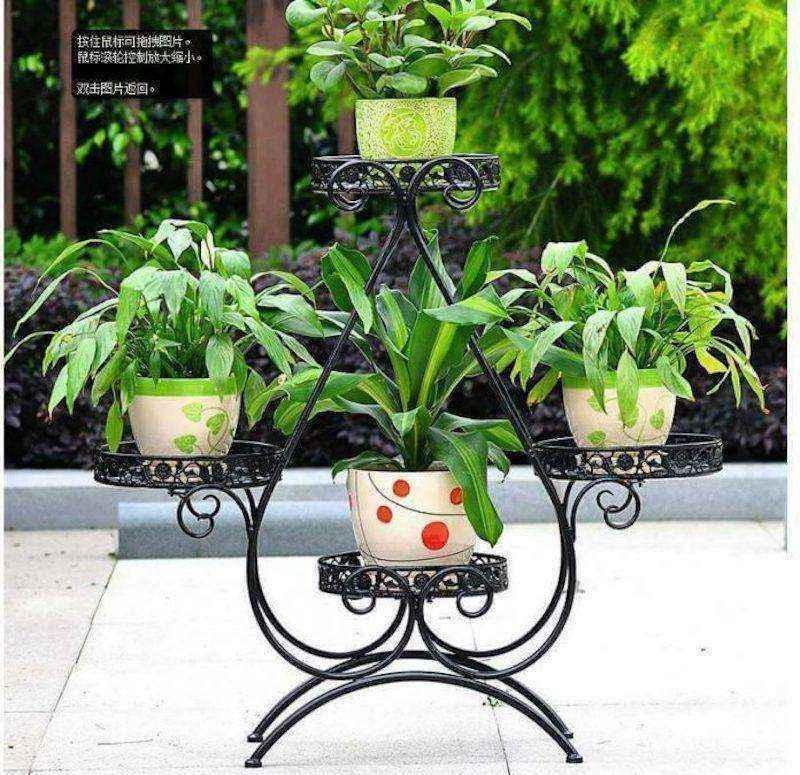 plantas-4 | 10 великолепных идей для украшения вашего дома растениями которые вам понравятся