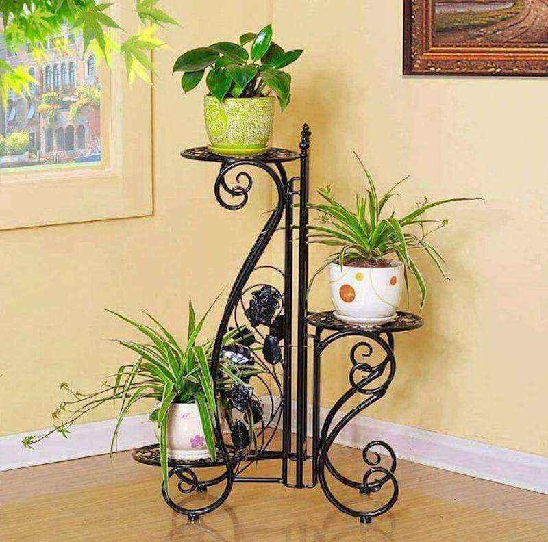 plantas-6 | 10 великолепных идей для украшения вашего дома растениями которые вам понравятся