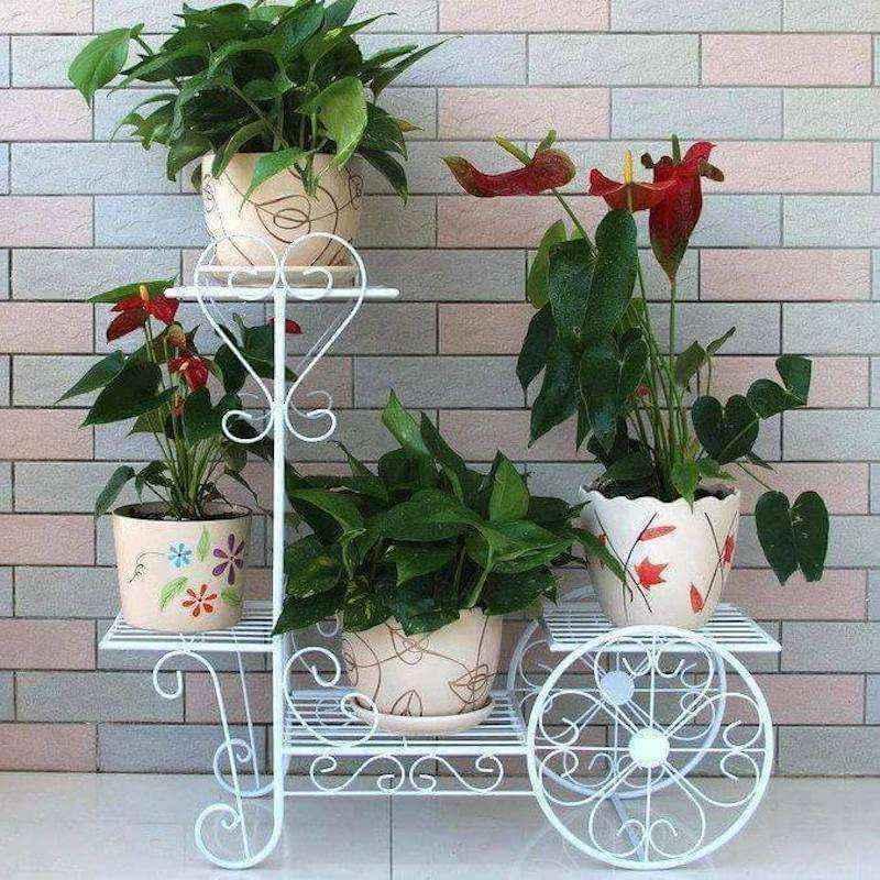 plantas-7 | 10 великолепных идей для украшения вашего дома растениями которые вам понравятся