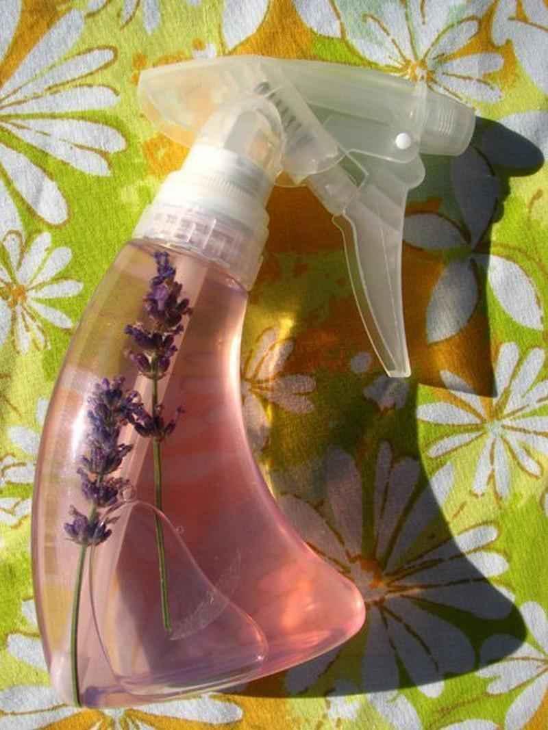 flea-repellent-3