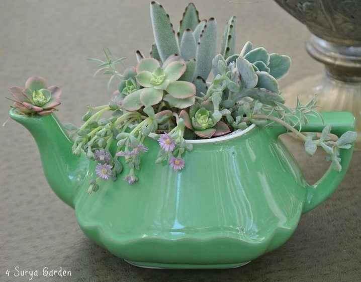 Чудесные цветочные горшки из старых чайников