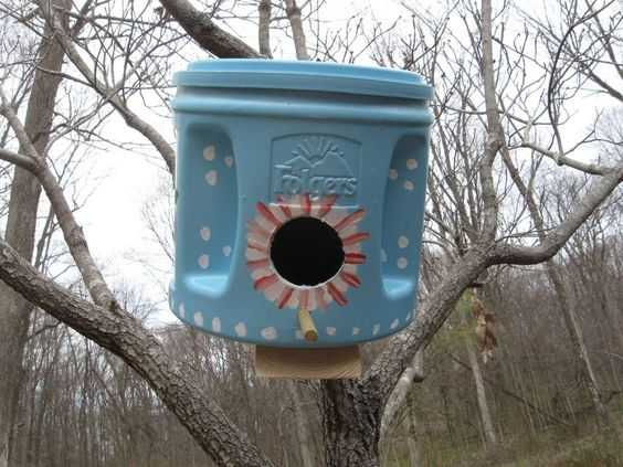 Удивительные домики для птиц которые можно сделать своими руками