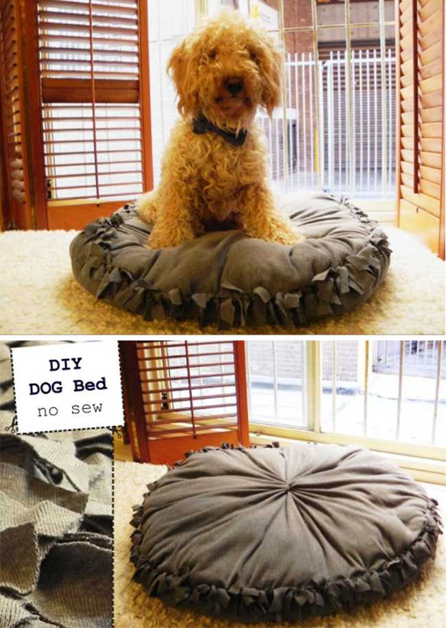 Кровати для домашних животных из подручных материалов