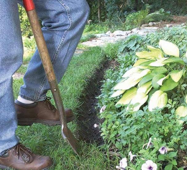Как сделать кромки садовых грядок - image7